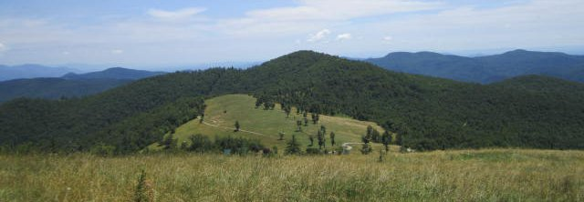 Client Case Study: Little Pisgah Mountain Conservation Easement